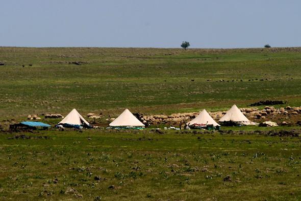 Nomadenzelte bei Diyarbakır in Südostanatolien